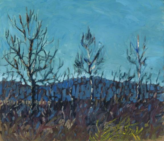 Bare Trees, Fish Lake, Novar ON