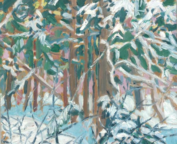 up_north_eric_mcconnachie_-_after_the_snow_-_tangled_woods__clear_lake__2010_-_10inx12in_web