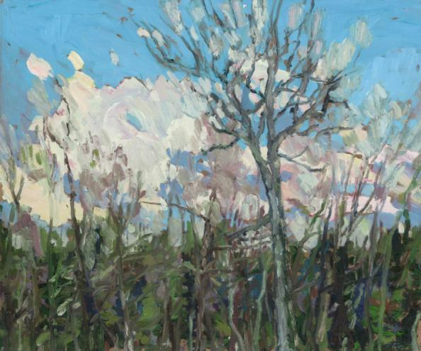 up_north_eric_mcconnachie_-_wind_and_trees__clear_lake__2010_-_10inx12in_web